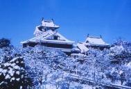 Fukuchiyama-jo Castle (Snow)