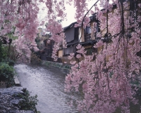 Gion Shirakawa 2